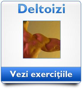 deltoizi