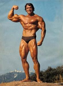 declansator-masa-musculara-arnold