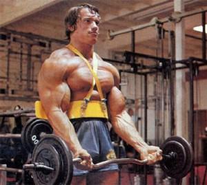 arnold-antrenament-bicepsi
