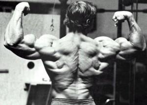 arnold-antrenament-spate