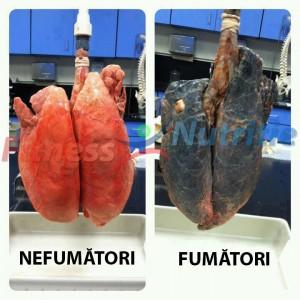 fumatul-boala