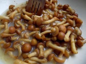 ciupercile-carnea-vegetala
